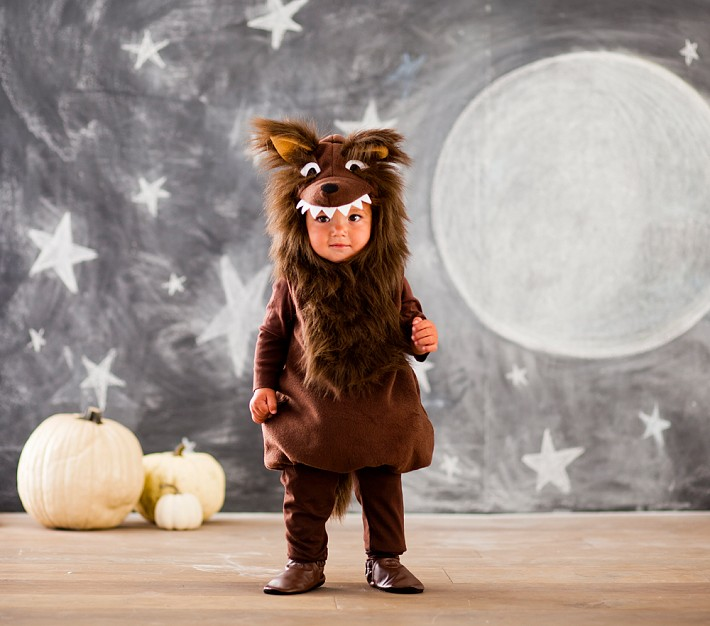 baby wolf costume | Sara Morris' Weblog